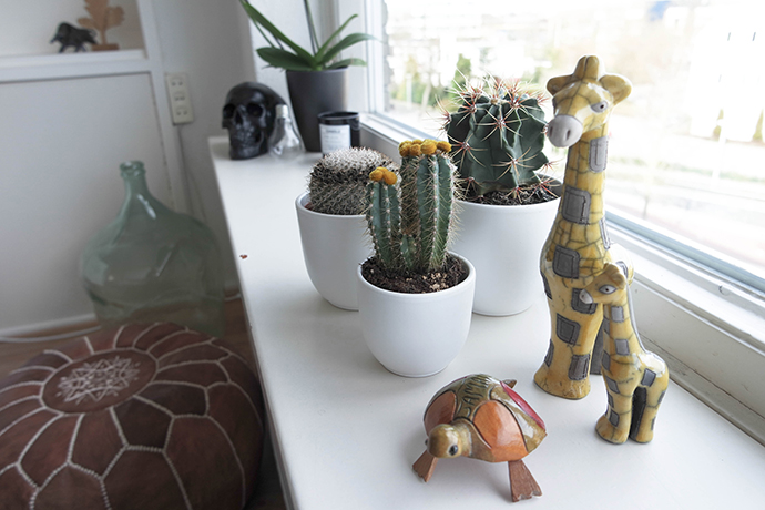 RED REIDING HOOD: Home interior inspiration cacti cactus brown leather moroccan pouf jamaican african souvenirs