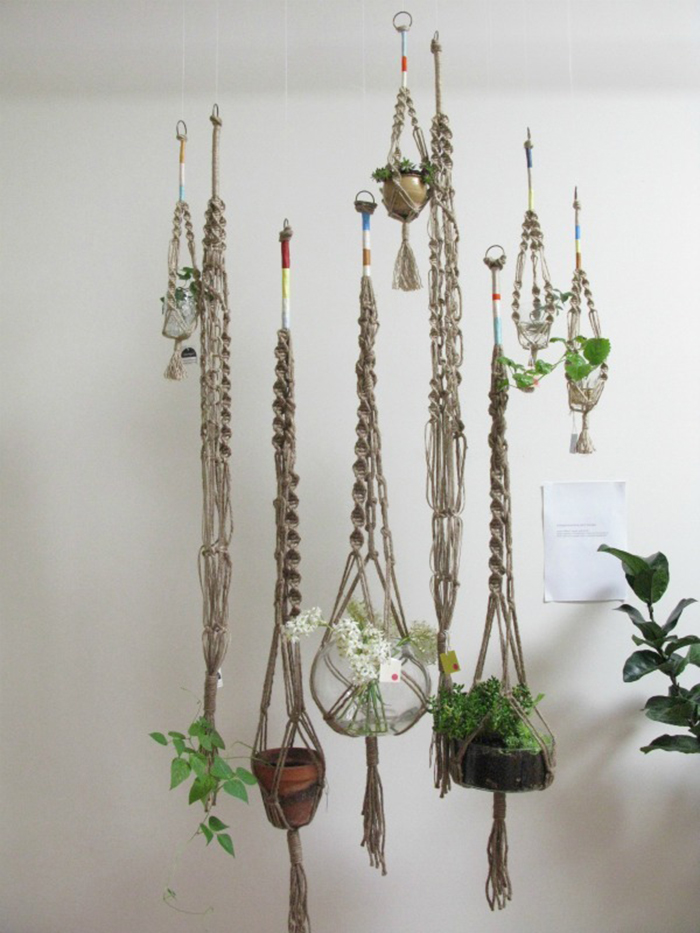 Home Hanging Plants Inspiration Red Reiding Hoodred