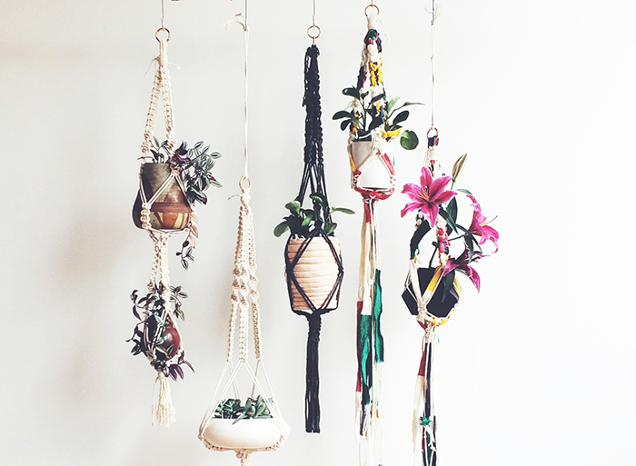 RED REIDING HOOD: Interior blogger macramé hanging plants home living trend