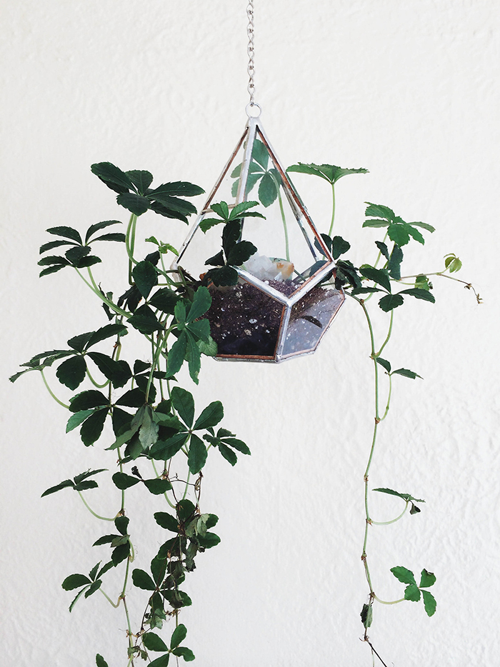 RED REIDING HOOD: Interior blogger glass hanging plants home living trend
